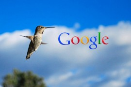 google-hummingbird-algorithm-seo-tips1-1