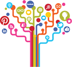 Right Social Platform for Your Business