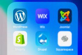 shopify-wordpress